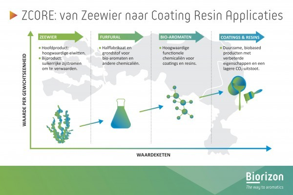 ZCORE-project benut zeewierreststromen voor superieure bio-coatings