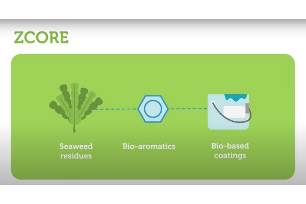 ZCORE project animatie: bio-verf met superieure eigenschappen uit zeewierreststromen